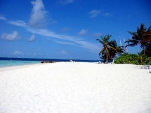 last minute web maldive